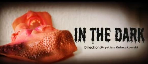 In the Dark – premiera
