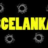 "Dubel #52 – ""Scelanka"" (2011)"