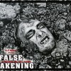 FALSE AWAKENING /slim version/