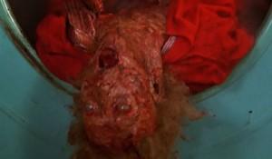 My Bloody Valentine 07