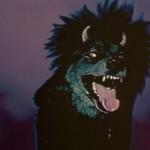 Devil Dog 017