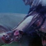 zombie flesh eaters 02